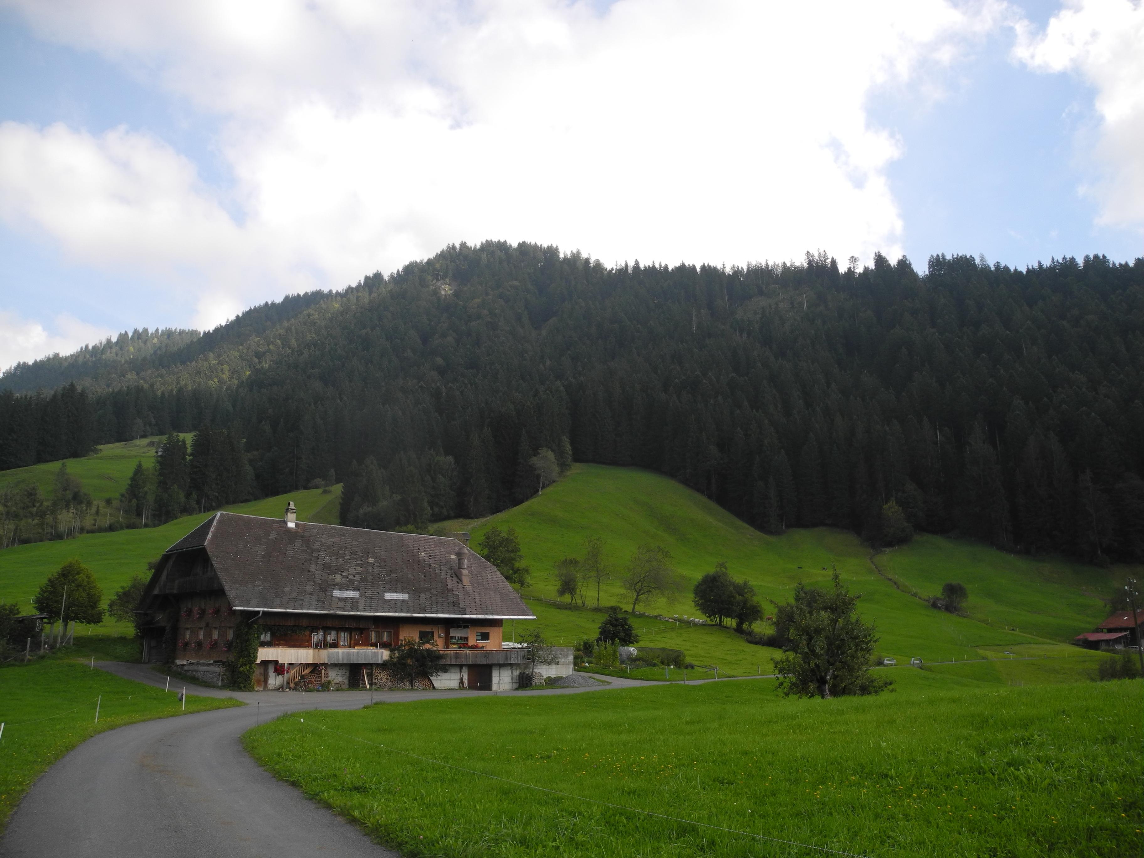 bauernhof-besuchen-emmental-2